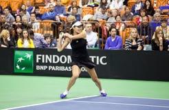 Παγκόσμιος Νο 6 τενίστας Ana Ivanovic Στοκ εικόνα με δικαίωμα ελεύθερης χρήσης