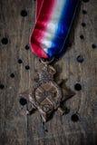 Παγκόσμιος πόλεμος ένα μετάλλιο Στοκ εικόνες με δικαίωμα ελεύθερης χρήσης