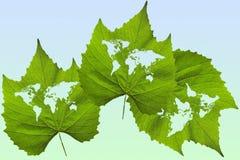 Τρία φύλλα με τον παγκόσμιο χάρτη Στοκ Φωτογραφίες