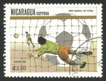 Παγκόσμιο Κύπελλο, τερματοφύλακας ποδοσφαίρου Στοκ εικόνα με δικαίωμα ελεύθερης χρήσης