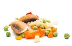 παγωμένα λαχανικά σούπας Στοκ εικόνες με δικαίωμα ελεύθερης χρήσης