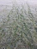 Παγωμένα βήματα Στοκ εικόνα με δικαίωμα ελεύθερης χρήσης