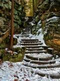 παγωμένα βήματα Στοκ Εικόνες