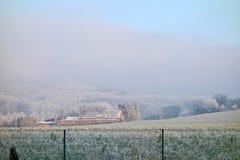 Παγωμένα καλλιεργήσιμο έδαφος και δέντρα στον κρύο χειμώνα foogy Στοκ Εικόνα