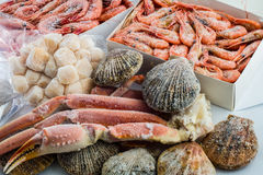 Παγωμένα κοχύλια του οστράκου, των γαρίδων και των καβουριών Στοκ φωτογραφίες με δικαίωμα ελεύθερης χρήσης