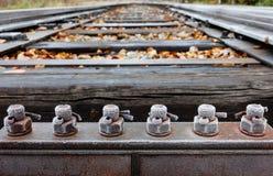 Παγωμένα μπουλόνια Στοκ εικόνα με δικαίωμα ελεύθερης χρήσης
