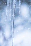 Παγωμένα παγάκια στο χιονώδες υπόβαθρο ημέρας Στοκ Εικόνες