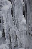 Παγωμένα παγάκια Στοκ φωτογραφία με δικαίωμα ελεύθερης χρήσης