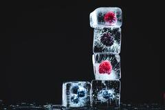 Παγωμένα φρούτα στους κύβους πάγου Στοκ εικόνα με δικαίωμα ελεύθερης χρήσης