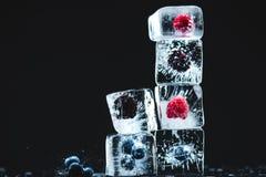 Παγωμένα φρούτα στους κύβους πάγου Στοκ φωτογραφίες με δικαίωμα ελεύθερης χρήσης