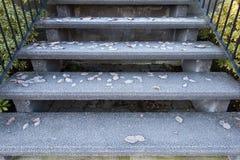Παγωμένα φύλλα στη σκάλα Στοκ Φωτογραφία