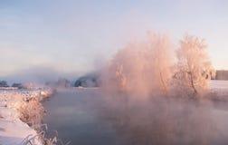Παγωμένα χειμερινά δέντρα Στοκ Εικόνα