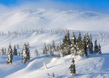 Παγωμένα χιονώδη δέντρα έλατου στο χειμερινό λόφο Στοκ φωτογραφία με δικαίωμα ελεύθερης χρήσης