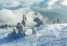 Παγωμένα χιονώδη δέντρα έλατου στο χειμερινό λόφο Στοκ Φωτογραφία