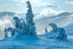 Παγωμένα χιονώδη δέντρα έλατου στο χειμερινό λόφο Στοκ Εικόνα