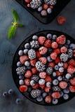 Παγωμένα juicy και ώριμα μούρα των βακκινίων, βατόμουρα Στοκ Φωτογραφία