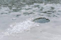 Παγωμένα shards Στοκ φωτογραφία με δικαίωμα ελεύθερης χρήσης