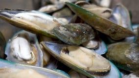 Παγωμένες γαρίδες θαλασσινών Φρέσκα ακατέργαστα θαλασσινά στο μετρητή στην αγορά τροφίμων απόθεμα βίντεο