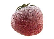 Παγωμένες φράουλες που απομονώνονται στο λευκό Στοκ Φωτογραφίες