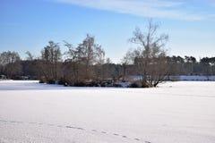 παγωμένη λίμνη η Κίνα κάλυψε το lushan χειμώνα τοπίων λιμνών πάγου Στοκ Εικόνα