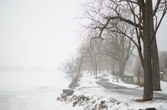 Παγωμένη λίμνη με την ομίχλη το χειμώνα Στοκ εικόνες με δικαίωμα ελεύθερης χρήσης