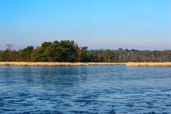 Παγωμένη λίμνη, πράσινα δέντρα και χρωματισμένη χρυσός χλόη Στοκ φωτογραφία με δικαίωμα ελεύθερης χρήσης