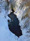 Παγωμένη λίμνη στο χιόνι Στοκ εικόνες με δικαίωμα ελεύθερης χρήσης