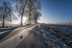 Παγωμένη αυγή Στοκ Φωτογραφίες