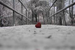 Παγωμένη βαλεντίνος καρδιά Στοκ εικόνες με δικαίωμα ελεύθερης χρήσης
