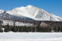 Παγωμένη επιφάνεια της λίμνης στα βουνά στοκ φωτογραφίες