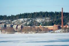 παγωμένη εργοστάσιο λίμνη Στοκ φωτογραφία με δικαίωμα ελεύθερης χρήσης