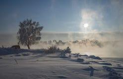 Παγωμένη ημέρα Στοκ Εικόνες