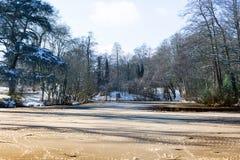 Παγωμένη και χιονισμένη λίμνη που περιβάλλεται από τα δέντρα το χειμώνα, με έναν ήλιο πρωινού στοκ εικόνα με δικαίωμα ελεύθερης χρήσης