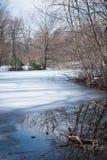 Παγωμένη λίμνη στο δάσος Στοκ φωτογραφίες με δικαίωμα ελεύθερης χρήσης