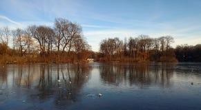 Παγωμένη λίμνη στο Μόναχο στοκ εικόνα