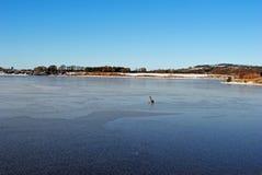 παγωμένη λίμνη Στοκ Φωτογραφίες