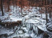 Παγωμένη πτώση νερού το χειμώνα Στοκ φωτογραφία με δικαίωμα ελεύθερης χρήσης