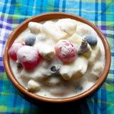 Παγωμένη σαλάτα φρούτων Στοκ φωτογραφίες με δικαίωμα ελεύθερης χρήσης