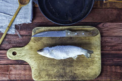 Παγωμένη τήξη ψαριών στον πίνακα κουζινών Στοκ φωτογραφία με δικαίωμα ελεύθερης χρήσης