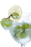 παγωμένη φέτα λεμονιών σταφυλιών Στοκ Εικόνα