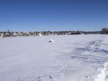 Παγωμένοι ποταμός και δέντρα το χειμώνα σε ένα πάρκο στοκ εικόνες