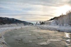 Παγωμένοι ποταμός και δέντρα το χειμώνα στοκ φωτογραφίες με δικαίωμα ελεύθερης χρήσης