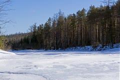 Παγωμένος δασικός ποταμός μια ηλιόλουστη ημέρα Μαρτίου Στοκ Φωτογραφίες