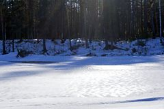 Παγωμένος δασικός ποταμός μια ηλιόλουστη ημέρα Μαρτίου Στοκ φωτογραφίες με δικαίωμα ελεύθερης χρήσης