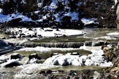 Παγωμένος κολπίσκος στο δάσος Στοκ Εικόνα