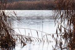 Παγωμένος παγετός ποταμός φθινοπώρου Στοκ Εικόνες
