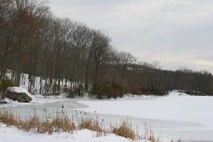 Παγωμένος ποταμός στην εκτός κράτους Νέα Υόρκη Στοκ Εικόνα