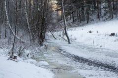 Παγωμένος ποταμός στη λιθουανική αγριότητα Στοκ Εικόνες