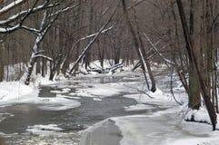παγωμένος ποταμός Στοκ Φωτογραφίες