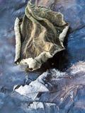 Παγωμένος στα ξηρά φύλλα πάγου Στοκ Φωτογραφία